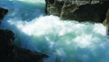 Surviving the White Water of Life