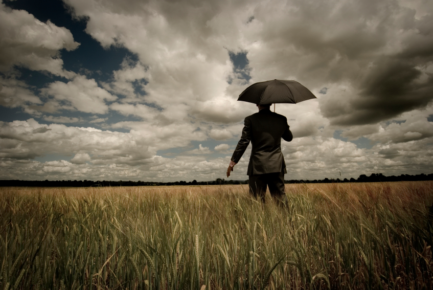 business man in field with umbrella