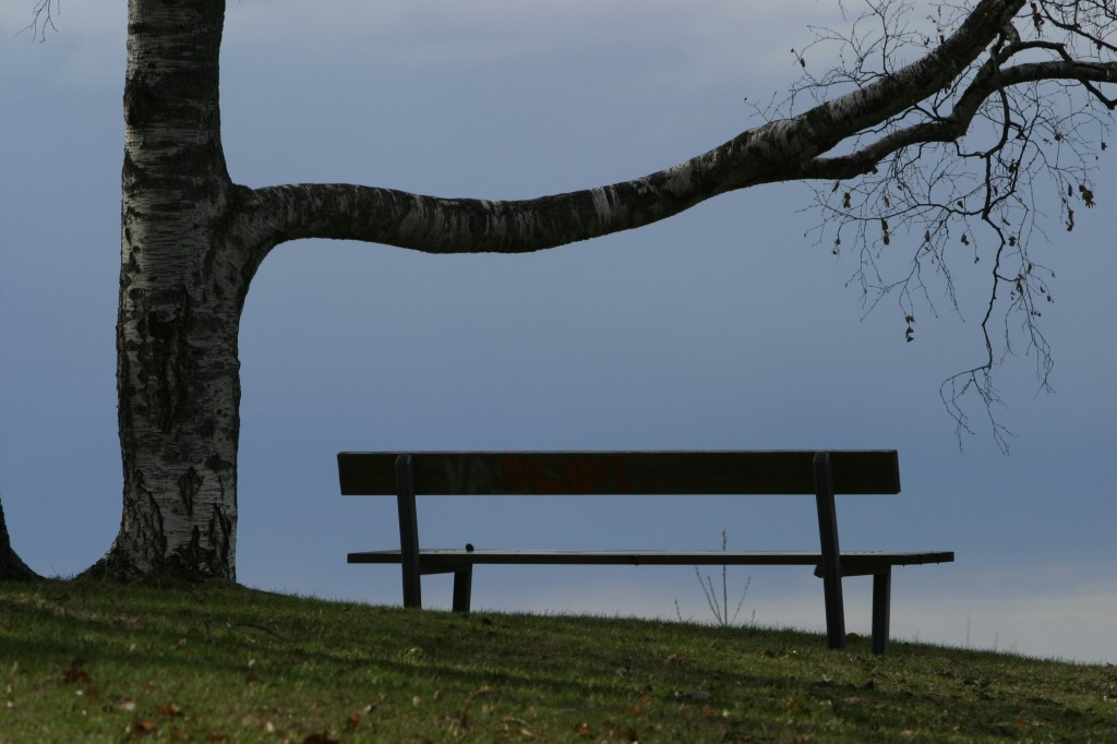 bench on gloomy day