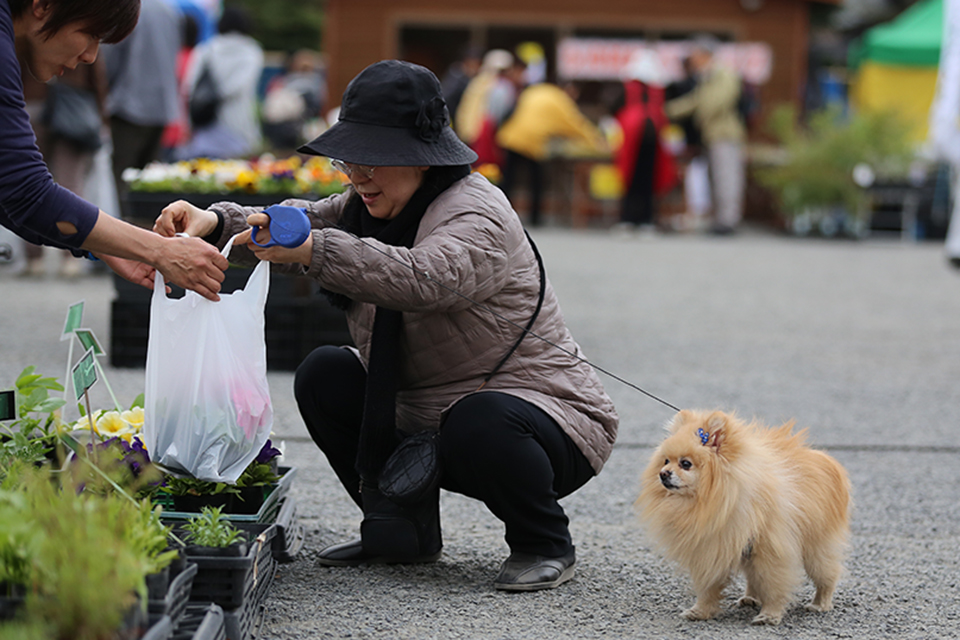 Woman and dog at market
