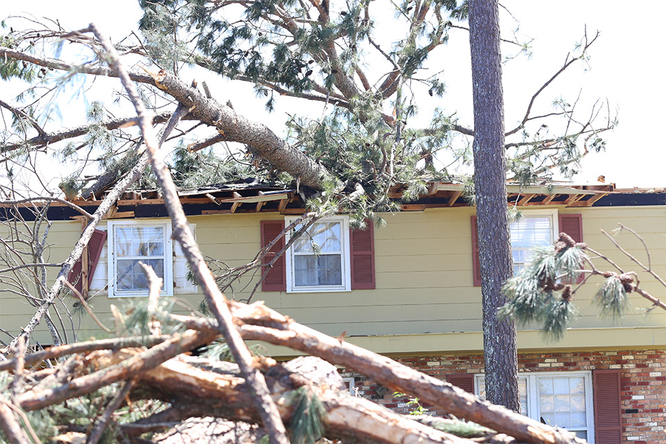 Trees smashing homes were still lodged in roofs, three days after the tornado hit.