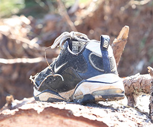 A shoe found laying on a fallen over tree in Louisville, Miss.