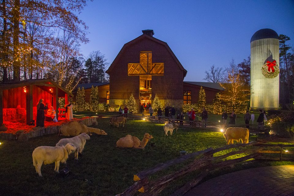 Library lit up, nativity animals out front