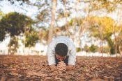 Finding Renewal This Fall: 5 Answers From Billy Graham